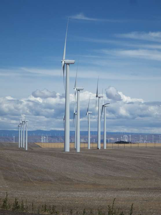 The farming of wind and wheat in Oregon.